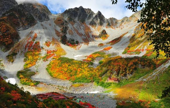 Картинка трава, горы, природа, фото, Китай