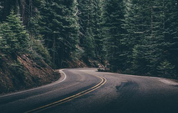 картинки дорога на рабочий стол