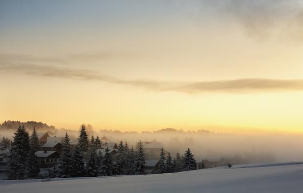 Картинка зима, лес, снег, туман, рассвет, дома, утро, ели, деревня
