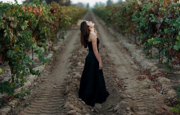 Картинка девушка, настроение, сад