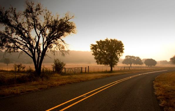 Картинка дорога, поле, небо, листья, деревья, природа, фон, дерево, widescreen, обои, листва, забор, трасса, ограда, ворота, …