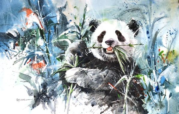 Панда и бамбук Китайская живопись  VK