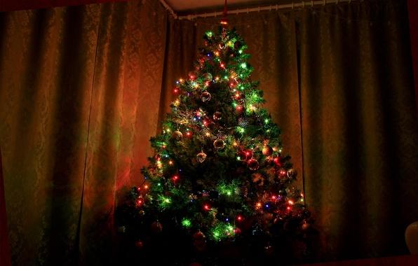 Картинка елка, ель, Рождество, Новый год, Christmas, Ёлка, New, Christmas tree, Happy, Year, 2015, Merry, Ёлочка