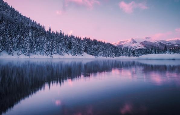 Картинка зима, лес, горы, озеро, пруд, Washington, штат Вашингтон, Gold Creek Pond, Гиак, Hyak