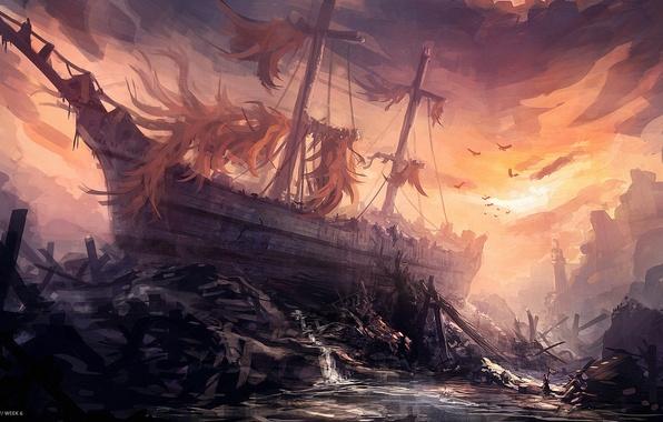 Картинка обломки, птицы, корабль, арт