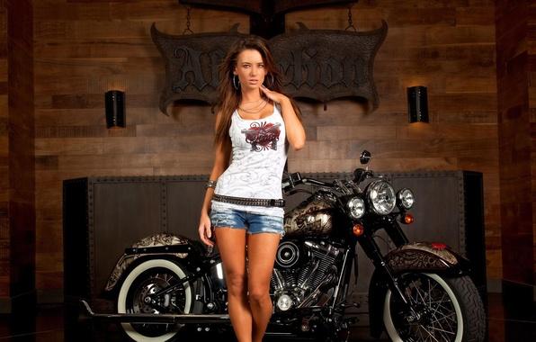 Картинка взгляд, девушка, шорты, майка, брюнетка, мотоцикл, HARLEY-DAVIDSON