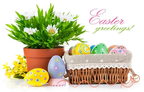 Картинка цветок, праздник, корзина, яйца, Пасха, кашпо