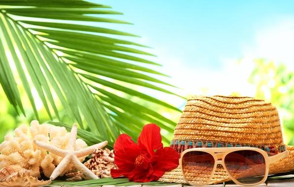 Обои пляж море пальма  раздел Песочница размер