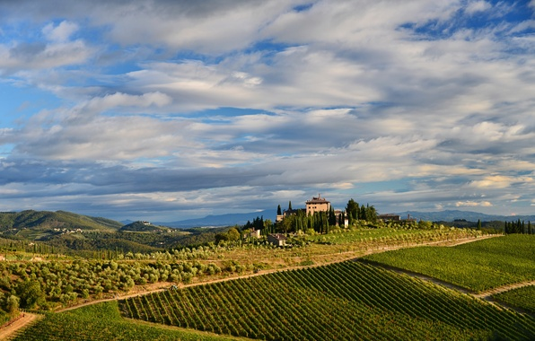 Картинка небо, облака, деревья, горы, дом, холмы, поля, Италия, виноградник