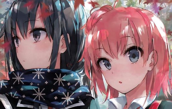 Картинка аниме, арт, девочка, двое, OreGairu