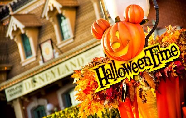 Картинка листья, украшения, дом, кукуруза, тыква, house, хэллоуин, leaves, Микки Маус, Mickey Mouse, pumpkin, decoration, corn, …
