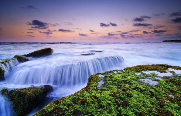 Картинка водоросли, камни, океан, рассвет, Bali, Indonesia, Canggu, Lima Beach