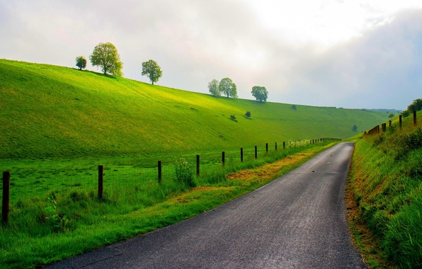 Картинка дорога, лес, небо, трава, деревья, горы, природа, весна, луг, grass, forest, road, sky, trees, landscape, …