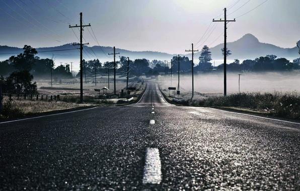 Картинка дорога, туман, разметка, столбы, провода