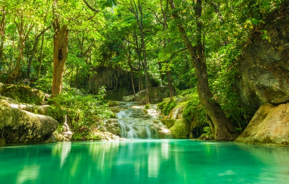 Картинка зелень, лес, лето, деревья, озеро, тропики, ручей, камни, водопад, джунгли