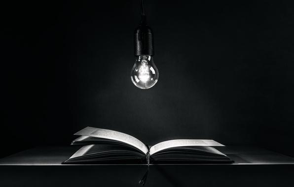 Обои лампочка, книга