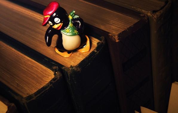 Картинка детство, игрушка, книги, пингвин, кепка, платок, сюрприз, киндер