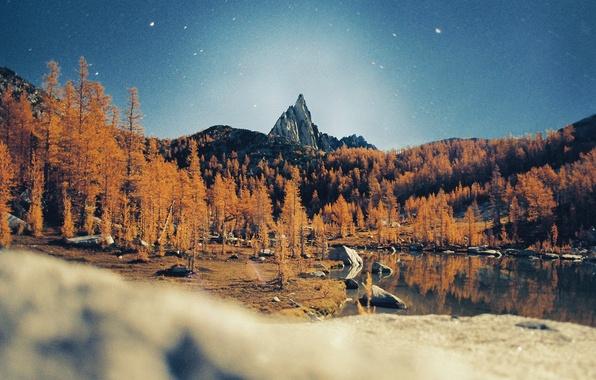 Картинка звезды, деревья, горы, ночь, озеро, отражение, зеркало, пик