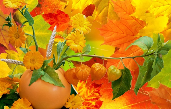 разное природа лампа цветы желтые осень  № 2634676 без смс