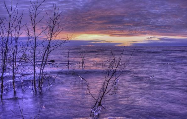 Картинка лед, зима, небо, облака, деревья, закат, оранжевый, озеро, берег, вечер, Швеция, сиреневое