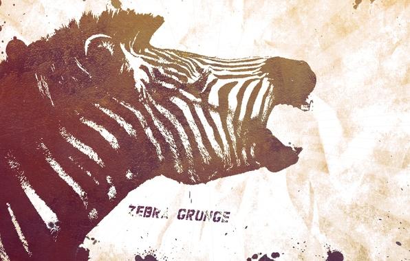 Картинка стиль, надпись, узоры, краски, colors, зебра, слова, style, patterns, words, 2560x1440, lettering, zebra