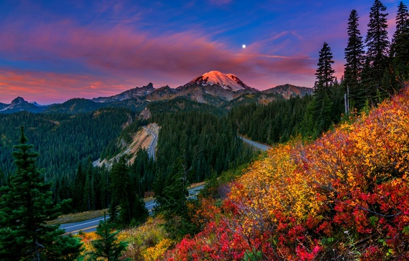 Картинка лес, небо, трава, деревья, закат, горы, природа, парк, colors, forest, sky, trees, nature, sunset, park, …
