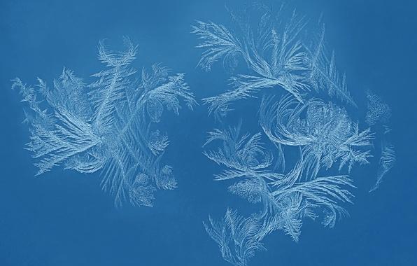 Фото обои холод, зима, иней, стекло, узор, окно, мороз
