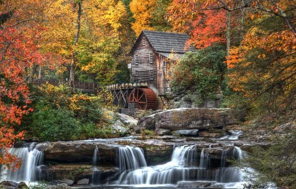 Картинка осень, лес, листья, деревья, природа, дом, река