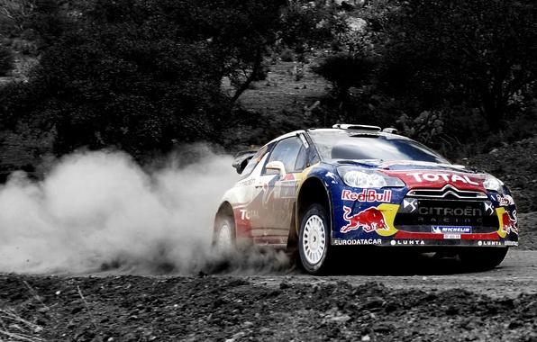 Картинка Пыль, Спорт, Машина, Скорость, Ситроен, Citroen, Red Bull, DS3, WRC, Rally, Ралли