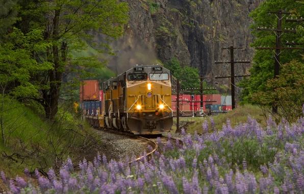 Картинки локомотив поезд