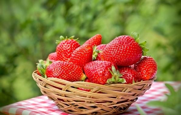 Картинка ягоды, клубника, красные, корзинка, fresh, спелая, strawberry, berries