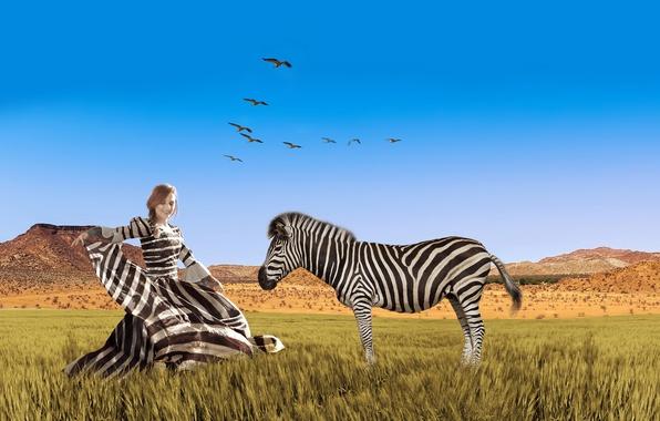 Картинка небо, трава, девушка, птицы, полосы, креатив, фотошоп, стая, равнина, платье, зебра, прическа, саванна, Африка, полосатая, …
