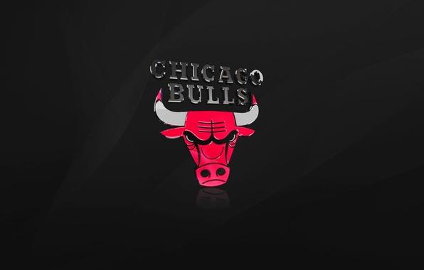 Картинка Черный, Чикаго, Баскетбол, Логотип, NBA, Chicago Bulls, Быки