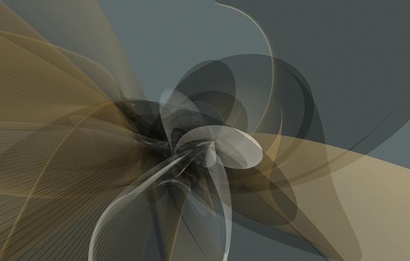 Картинка линии, полосы, вектор, изгибы