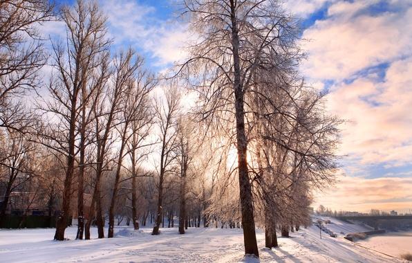 Картинка холод, иней, дорога, небо, облака, снег, деревья, пейзаж, природа, Зима, forest, road, landscape, nature, pathway, …