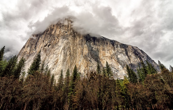 Картинка небо, деревья, тучи, скала, гора, Калифорния, USA, США, rock, Йосемити, sky, trees, California, clouds, mountain, …