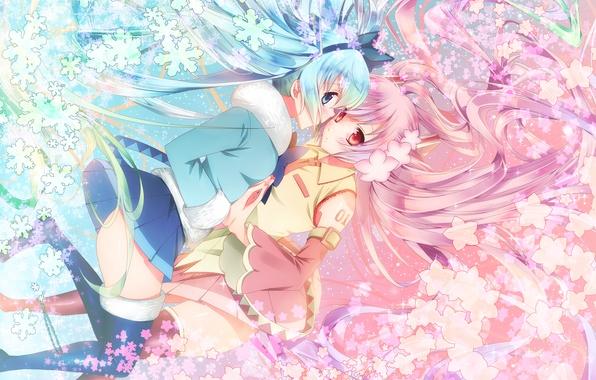 Картинка цветы, снежинки, девушки, аниме, сакура, арт, vocaloid, sakura miku, yuki miku
