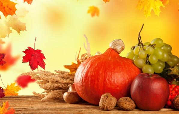 Картинка осень, листья, грибы, яблоко, тыква, фрукты, овощи, калина