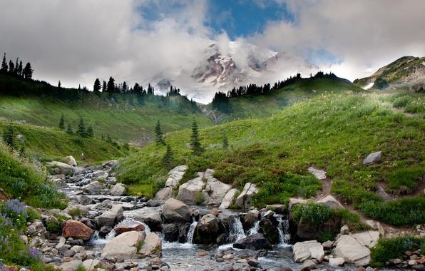 Картинка небо, трава, вода, облака, деревья, пейзаж, горы, река, ручей, камни