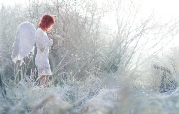 Картинка девушка, природа, ангел