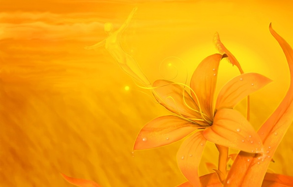 Картинка полет, рисунок, Цветок