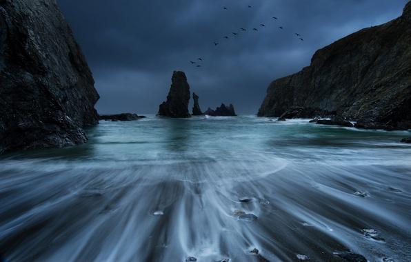 Картинка море, гроза, небо, птицы, тучи, камни, скалы, берег, побережье, Франция, прибой, синее, Бретань