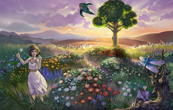 Картинка поле, небо, облака, пейзаж, закат, цветы, дерево, вечер, стрекоза, воздушный змей, девочка, girl, sky, landscape, …