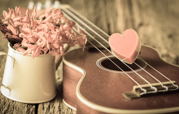 Картинка цветы, сердце, love, vintage, heart, romantic, укулеле