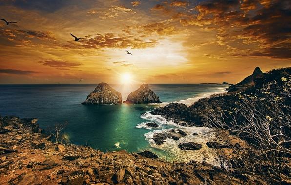 Картинка закат, океан, скалы, побережье, Бразилия, Brazil, Атлантический океан, Atlantic Ocean, Pernambuco, Пернамбуку, Фернанду-ди-Норонья, Fernando de …
