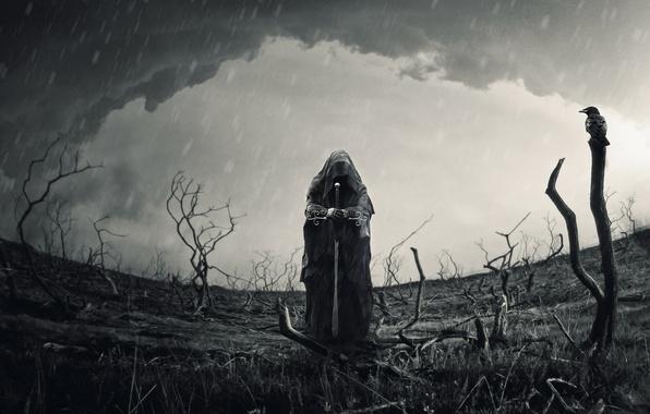 Картинка поле, небо, ветки, меч, Человек, воин, ворон, роба