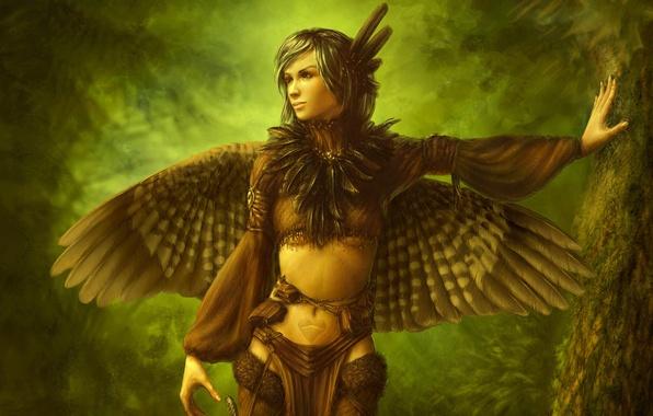 Картинка лес, девушка, дерево, птица, крылья, перья