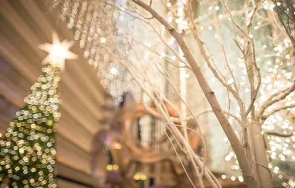 Картинка город, огни, дерево, праздник, улица, елка, Рождество, Новый год, USA, Christmas, San Francisco, боке, holiday, …