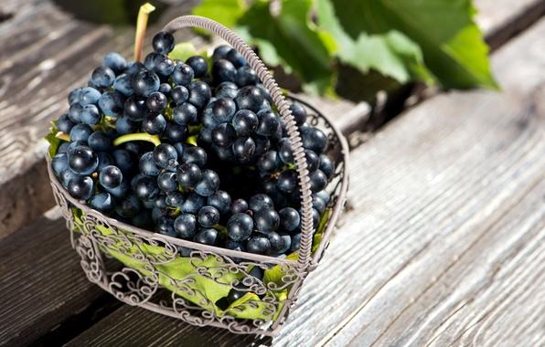 Картинка листья, красный, ягоды, корзина, виноград, корзинка, грозди