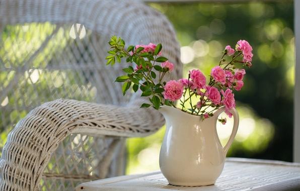 Картинка цветы, природа, стол, розы, кресло, розовые, кувшин